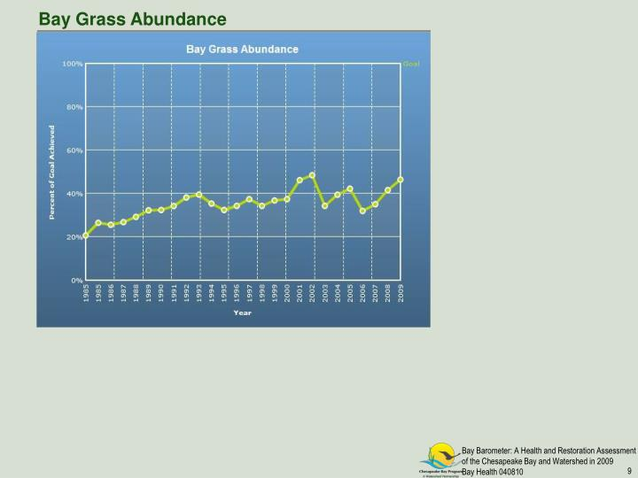 Bay Grass Abundance