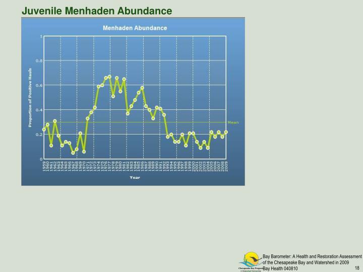 Juvenile Menhaden Abundance
