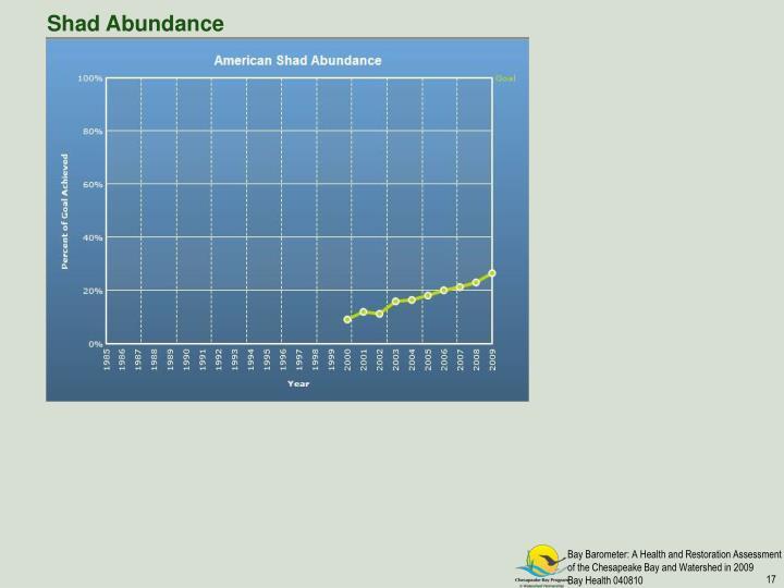 Shad Abundance