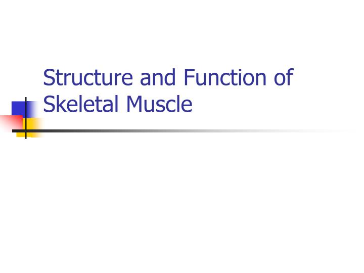 structure and function of skeletal muscle n.
