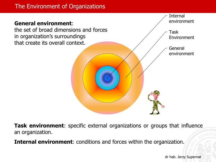 the environment of an organization