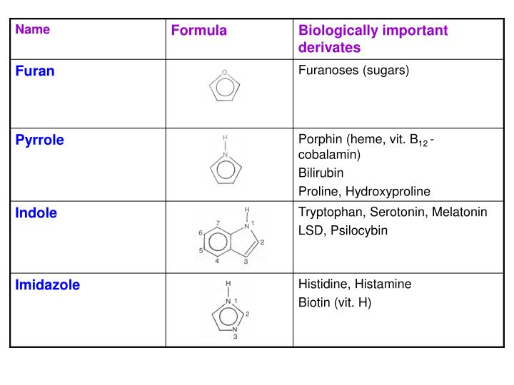 Biologically important heterocycles