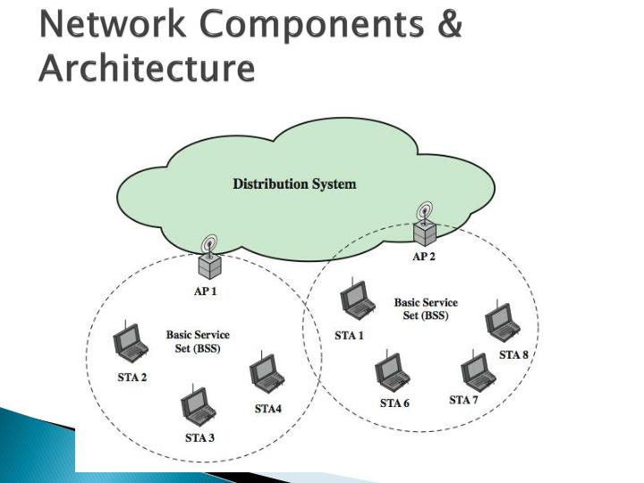 Network Components & Architecture