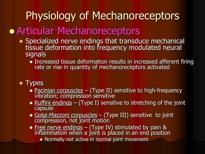 Physiology of Mechanoreceptors
