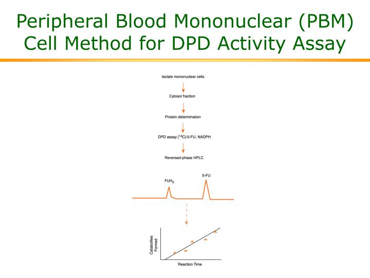 Peripheral Blood Mononuclear (PBM) Cell Method for DPD Activity Assay