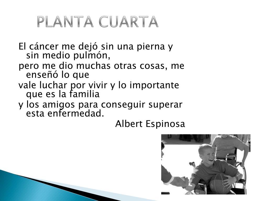PPT - RESUMEN PLANTA CUARTA PowerPoint Presentation, free ...