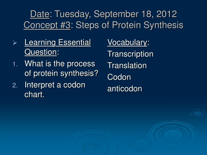 Date tuesday september 18 2012 concept 3 steps of protein synthesis