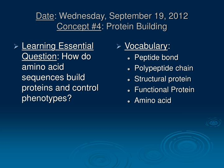 Date wednesday september 19 2012 concept 4 protein building