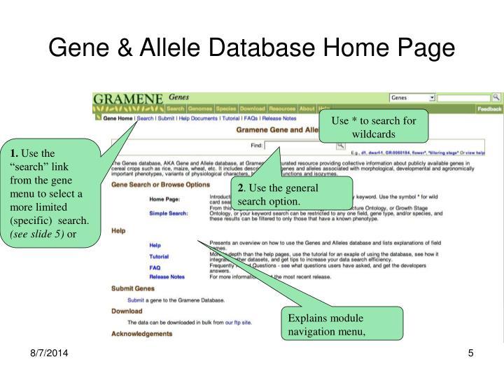 Gene & Allele Database Home Page
