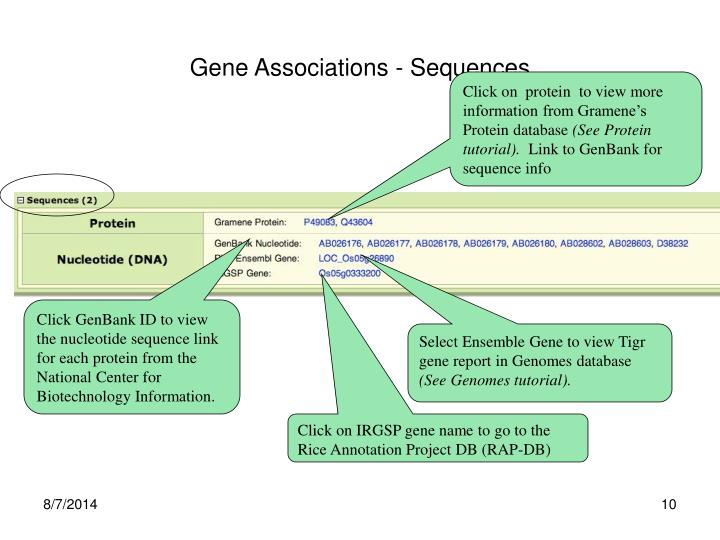 Gene Associations - Sequences