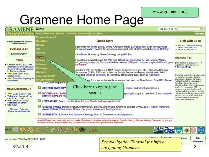 Gramene home page