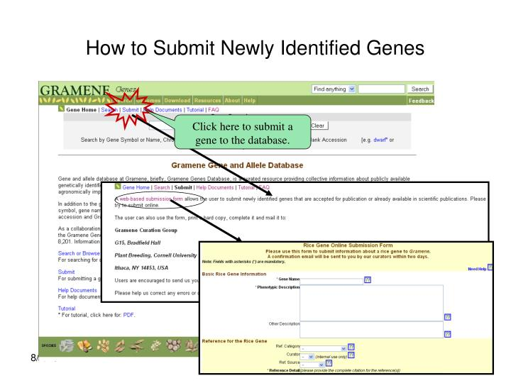 How to Submit Newly Identified Genes