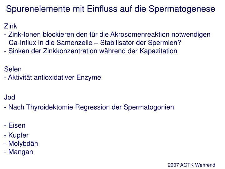 Spurenelemente mit Einfluss auf die Spermatogenese