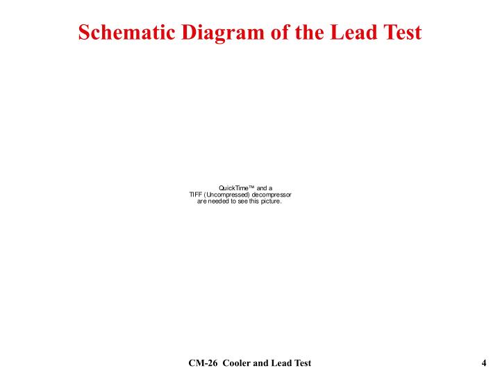 Schematic Diagram of the Lead Test