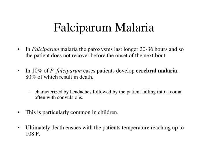 Falciparum Malaria
