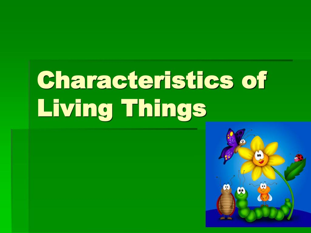 Characteristics Of Living Things Powerpoint Ppt Presentation