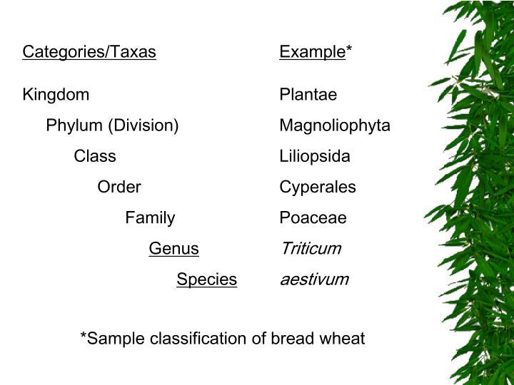 Categories/Taxas