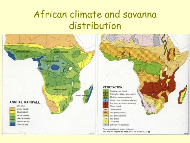 African climate and savanna distribution