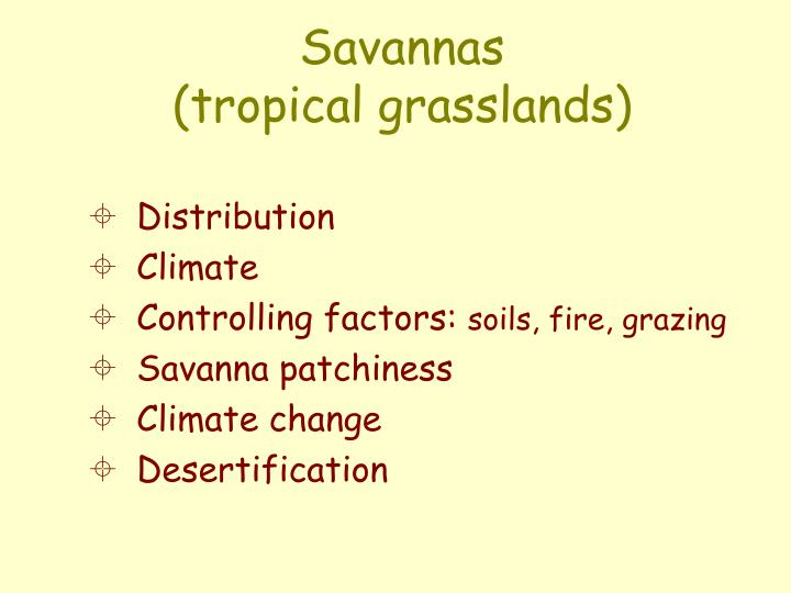 Savannas tropical grasslands