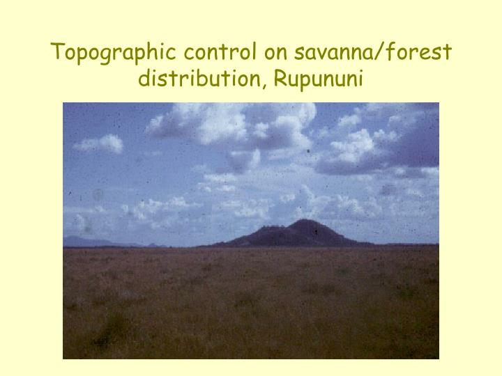 Topographic control on savanna/forest distribution, Rupununi