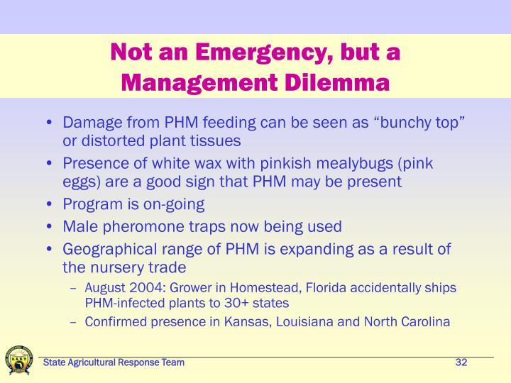 Not an Emergency, but a Management Dilemma