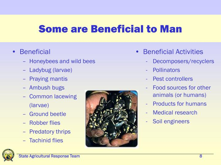 Some are Beneficial to Man