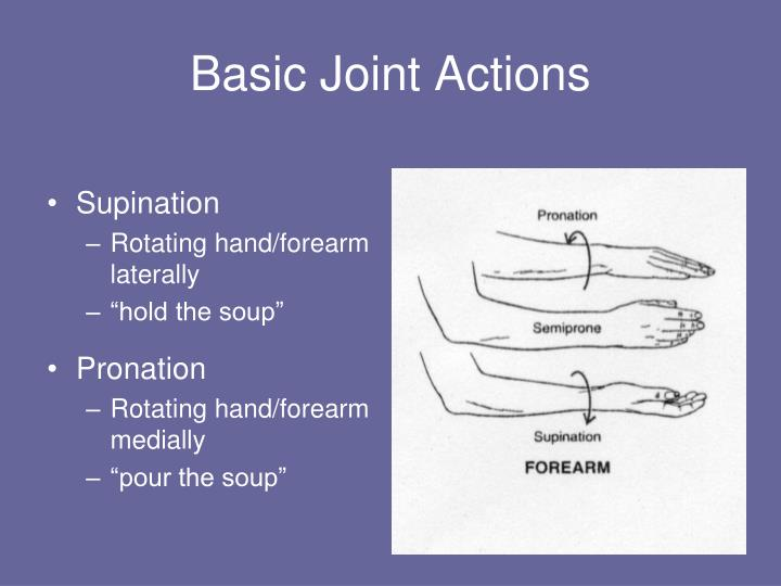 Basic Joint Actions