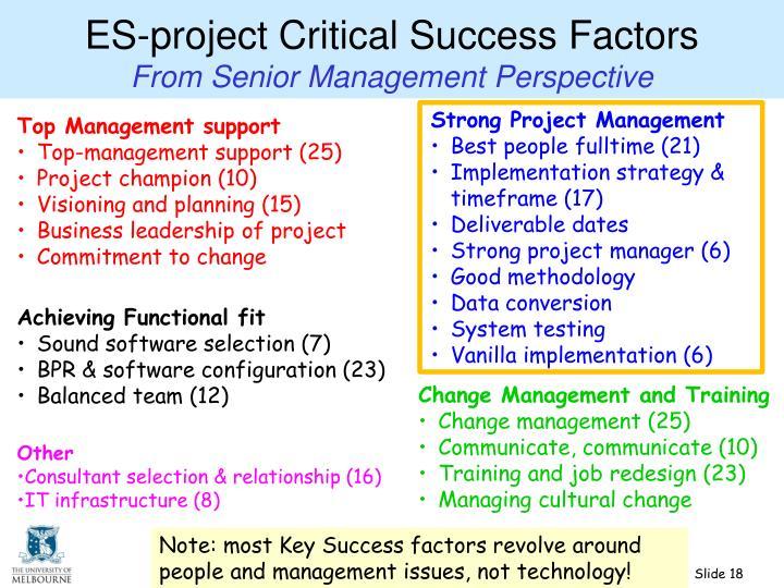 ES-project Critical Success Factors