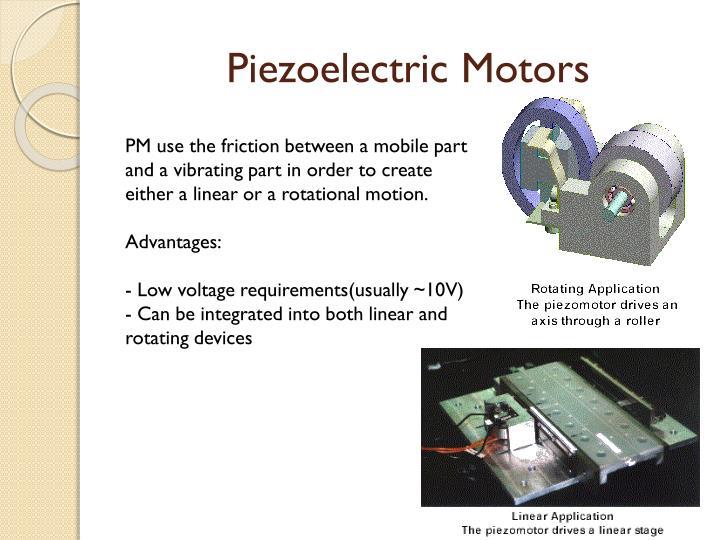 Piezoelectric Motors