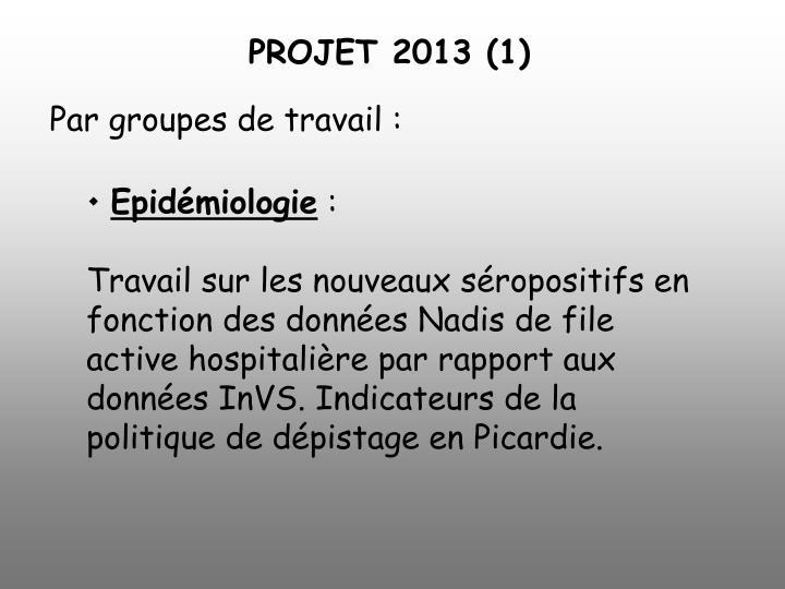 PROJET 2013 (1)