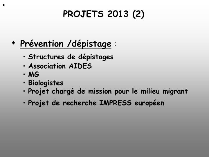 PROJETS 2013 (2)