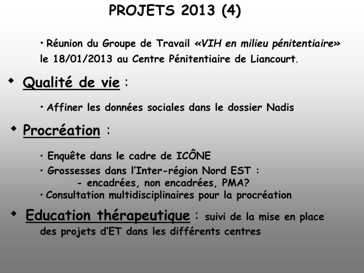 PROJETS 2013 (4)