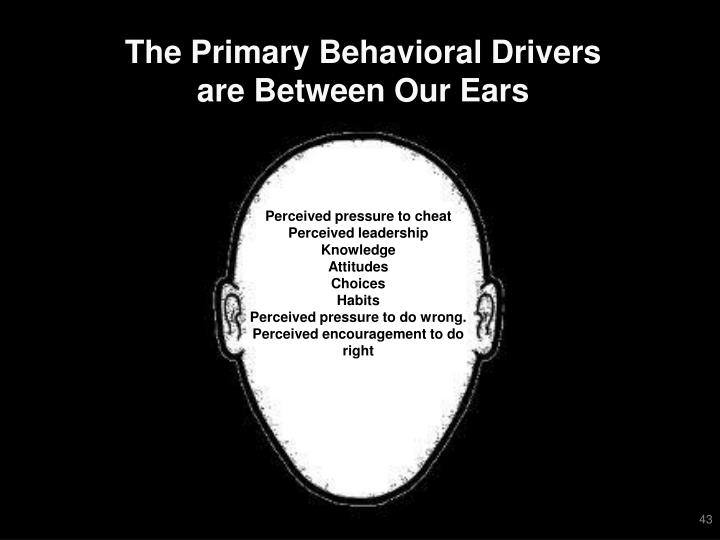 The Primary Behavioral Drivers are Between Our Ears
