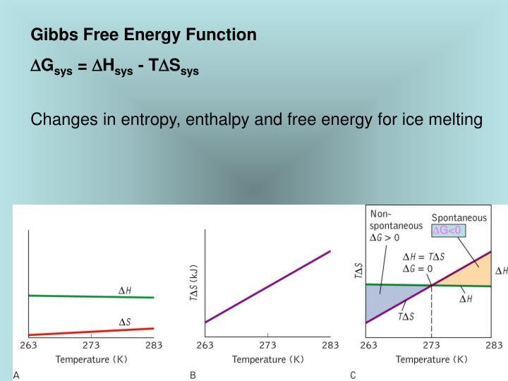 Gibbs Free Energy Function
