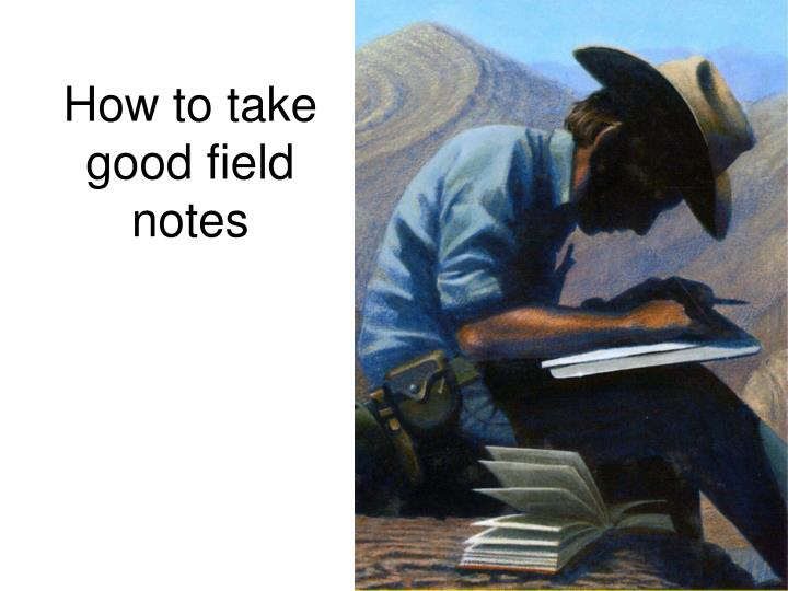 how to take good field notes n.