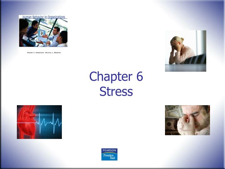 chapter 6 stress n.