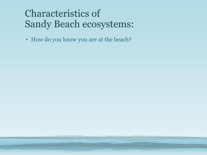 Characteristics of sandy beach ecosystems