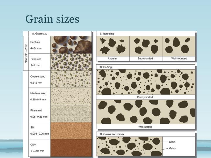 Grain sizes