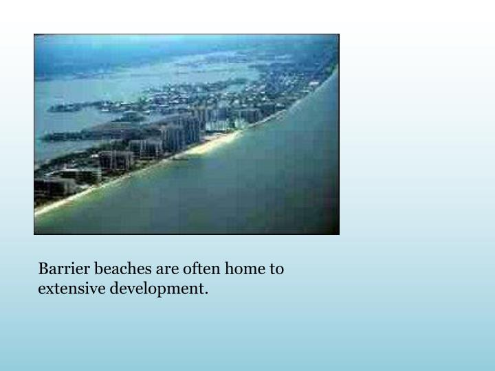 Barrier beaches are often home to extensive development.