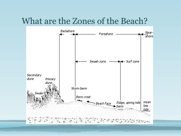 What are the Zones of the Beach?