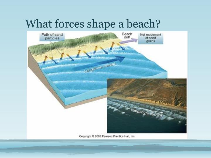 What forces shape a beach?