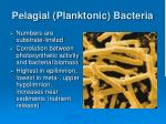pelagial planktonic bacteria1
