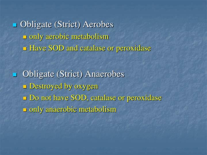 Obligate (Strict) Aerobes