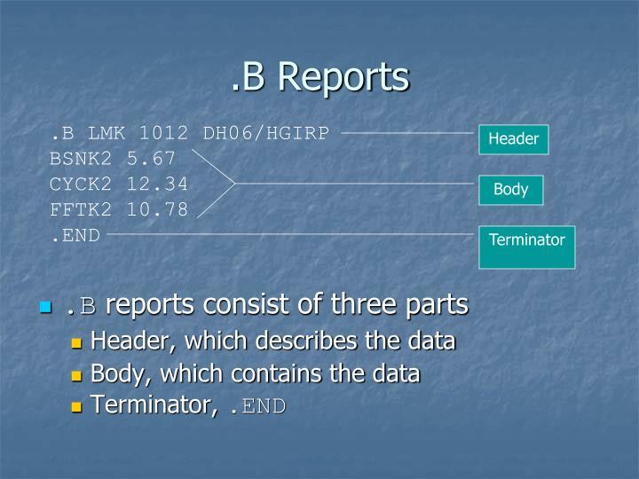 .B Reports