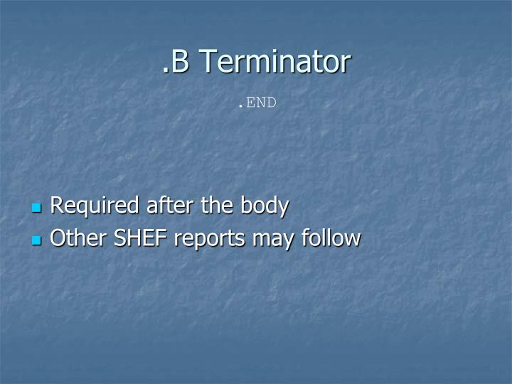 .B Terminator