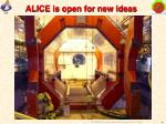 alice is open for new ideas