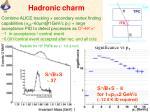 hadronic charm
