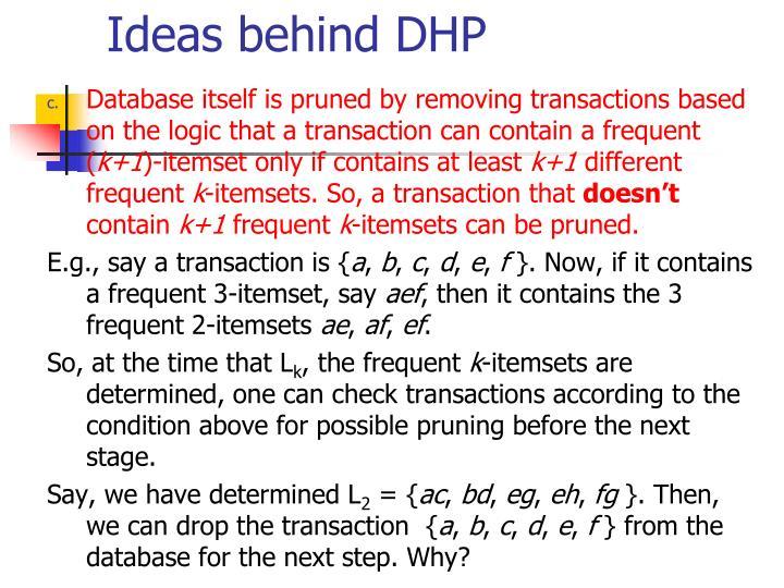 Ideas behind DHP