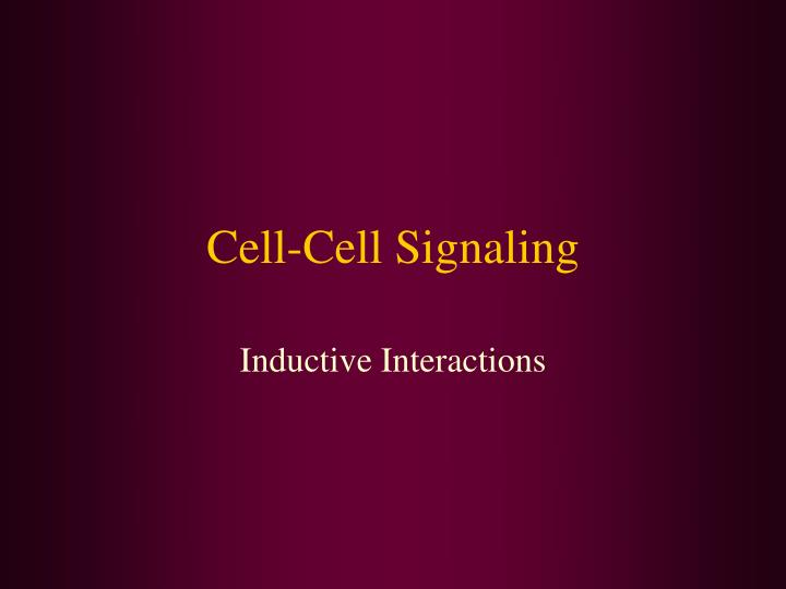 cell cell signaling n.