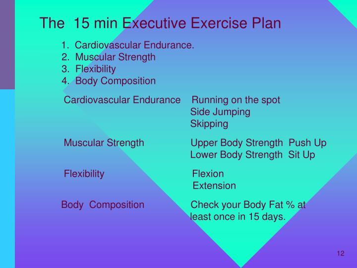 The  15 min Executive Exercise Plan